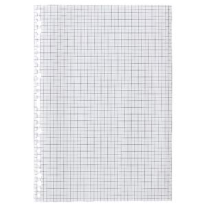 X A4 Grid Loose Leaf Refills 100 Pack