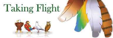 Take Flight with DISC - Talent Tools