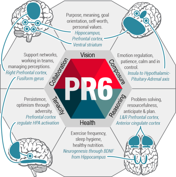 Predictive Resilience Profile (PR6) at Talent Tools - ResiCoach  Building Resilience Training