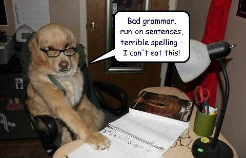 dog-eat-homework