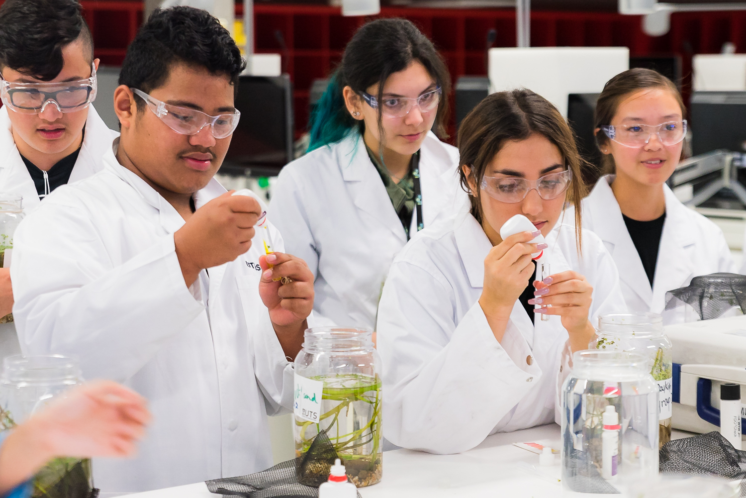 Project-based learning: students in a lab at the recent Summer School