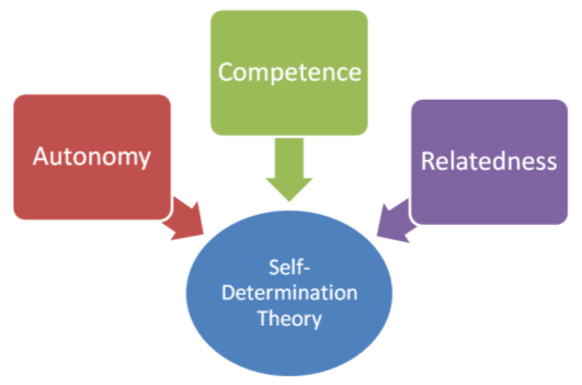 Self_Determination_Theory_Diagram
