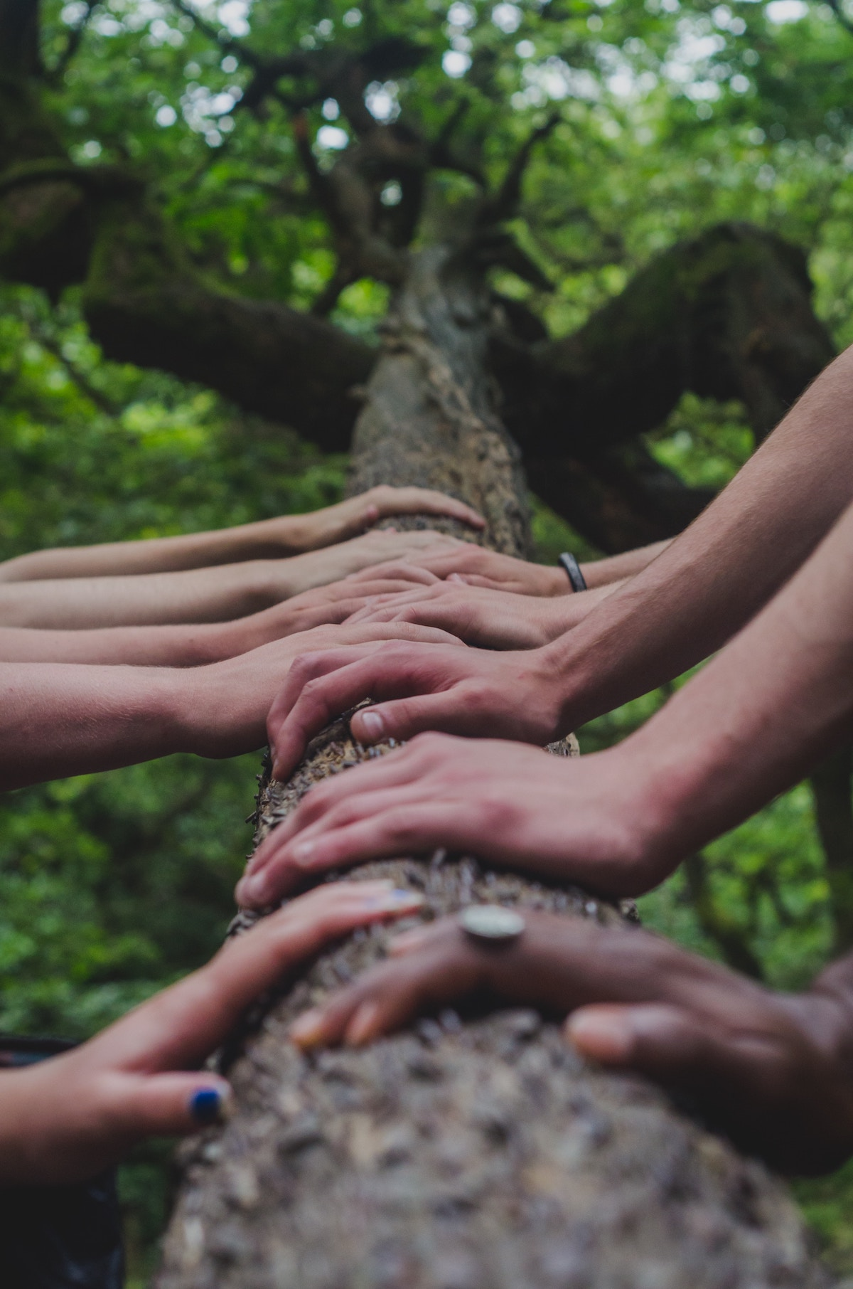 Enabling impact through the Social Impact Grants: closes 24 June