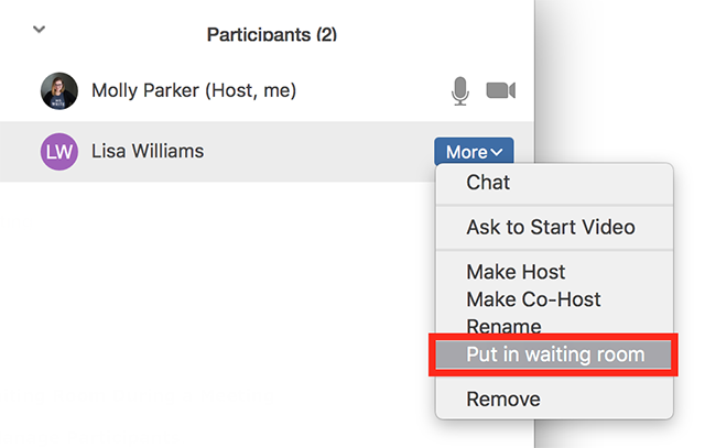Screenshot of Zoom participant 'More' dropdown with 'Put in waiting room' highlighted.