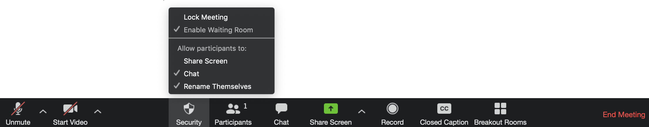 Zoom security toolbar displaying options to 'Lock Meeting' and allow participants to 'Share Screen', 'Chat', and 'Rename Themselves'