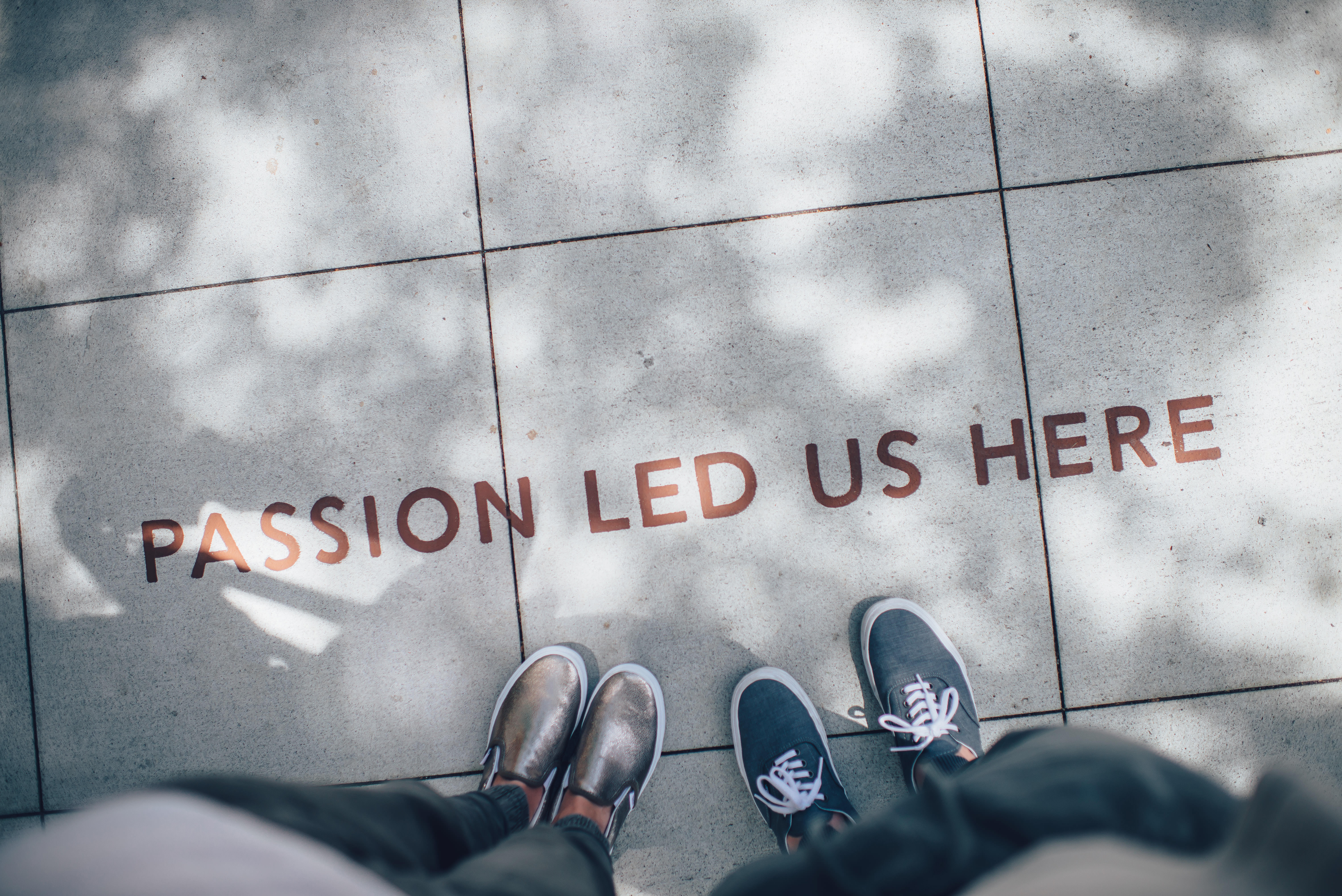 The Importance of Passion in Your Career
