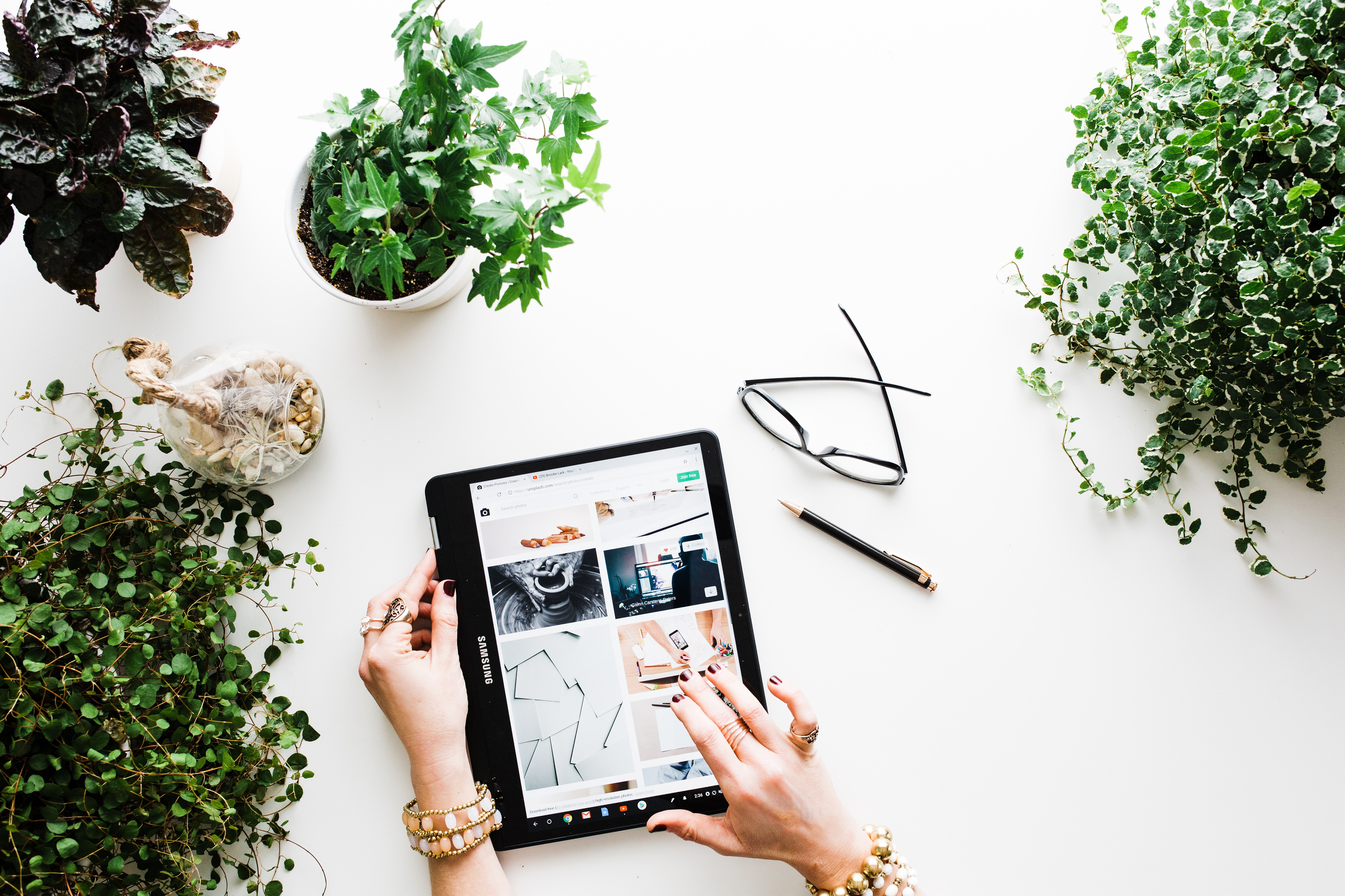 5 Reasons You Need a Houseplant in Your Work Space (+ 6 Plants You Might Actually Manage to Keep Alive)