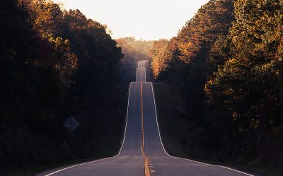 I took the road less travelled, but did it make a difference?