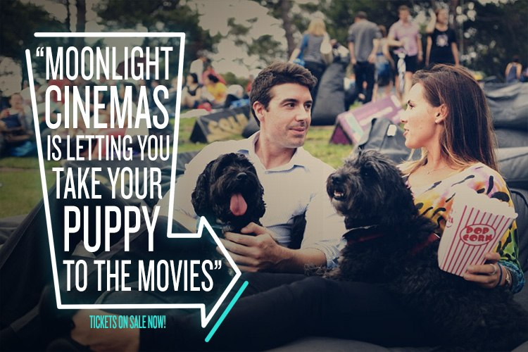 True Local Moonlight Cinemas Doggie Nights