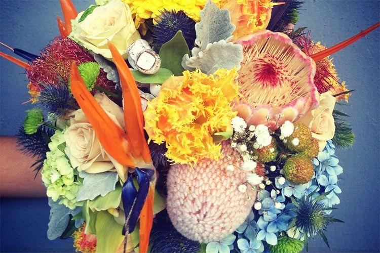 melb_FlowerFlower