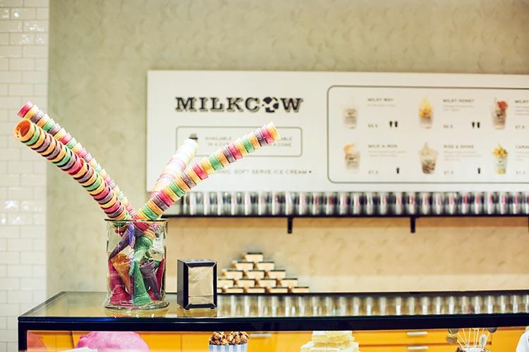 Milkcow - cones