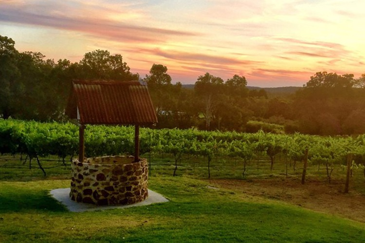 Image credit: Fair Brosen Winery and Cafe