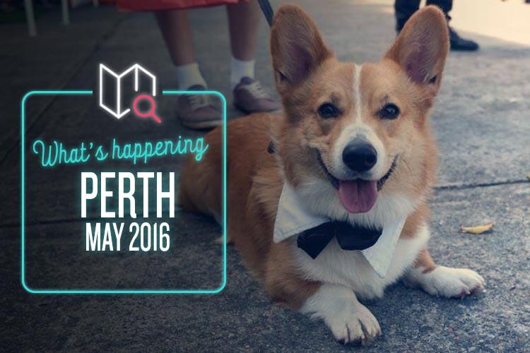 Whats Happening May 2016-Perth