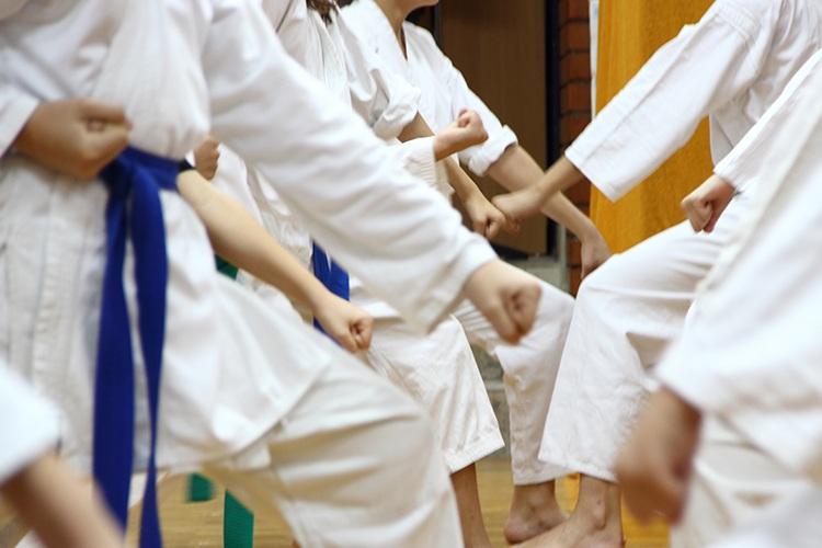 ADL_SA Judo Academy