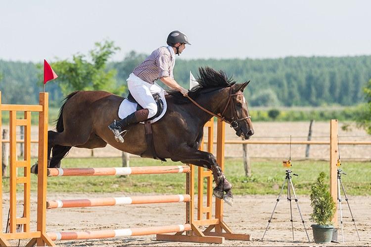 Canberra_Equestrian