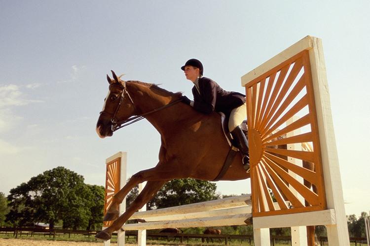 Perth_Equestrian