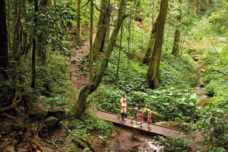 Image credit: Queensland national Parks