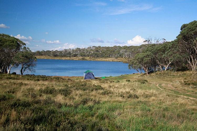 Image credit: National Parks NSW