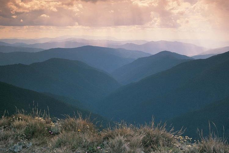 Image credit: Alpine National Park