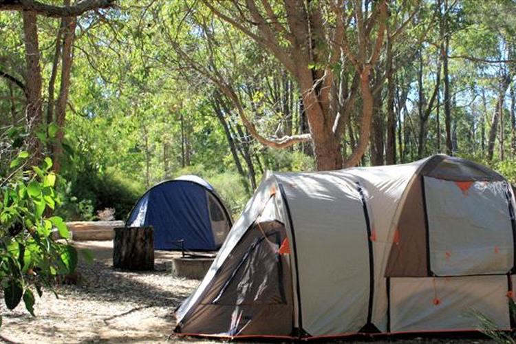 Image credit Wharncliffe Mill & Perthu0027s Most Picturesque Camping Spots | True Local Blog