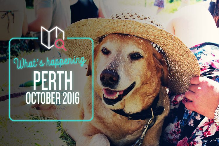 Whats-Happening-October-2016-Perth