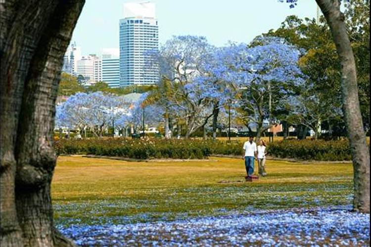 Image credit: Visit Brisbane
