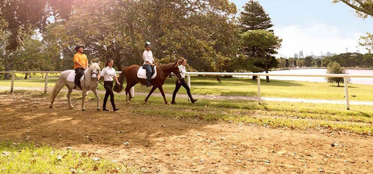 Image credit: Centennial Parklands Equestrian Centre Website