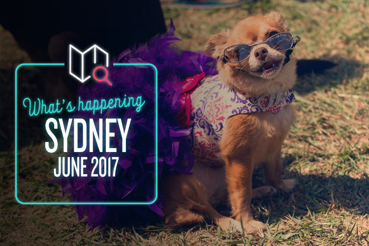 whats-happening-june-2017-sydney