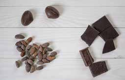 What is chocolate? image