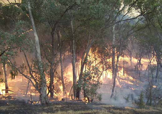 Fire Danger Period announced for the Campaspe Shire image