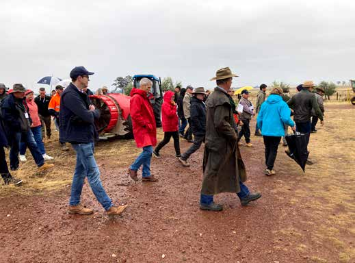 Olive Growers Field Day on soil at Lisadurne Hill in Rushworth image