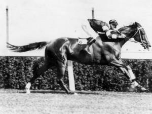 Phar Lap, legendary racehorse.