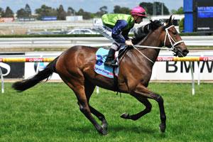2020 Victoria Derby Odds Firm on Caulfield Classic Winner Albarado