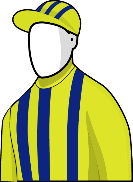 Grand Marshal 2016 Melbourne Cup Silks