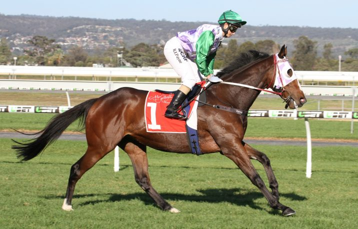 Dwyer Could Have Heir To The 2018 Queensland Derby Throne