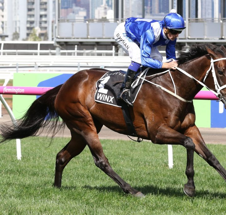 Winx Guineas Results 2020: Wapiti Wins For The Punters