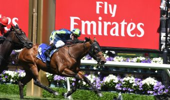 2018 Black Caviar Lightning First-Up for Merchant Navy?