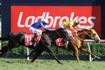 2018 Ladbrokes CF Orr Stakes First-Up for Mighty Boss