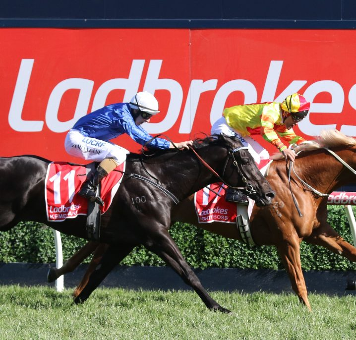 Competitive Mighty Boss Set for Futurity Stakes 2018