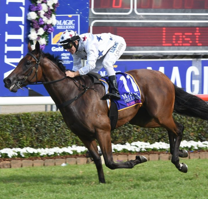 Golden Slipper Favourite Sunlight Tops Silver Slipper Stakes 2018 Field & Odds