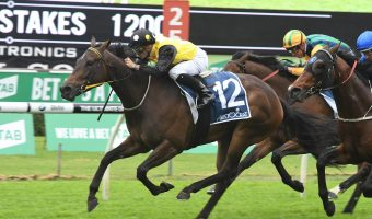 TJ Smith Stakes 2018 Target for In Her Time