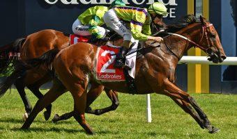 2018 Kensington Stakes Field & Odds: Betting Wide Open