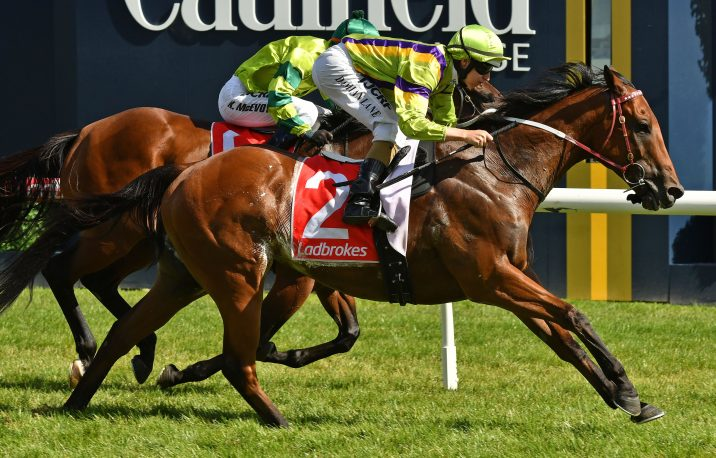 2018 Kensington Stakes Field & Odds: Betting Wide Open