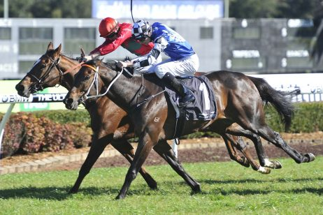 Australia Day Cup Calls for 2018 Gosford Cup Winner Singing
