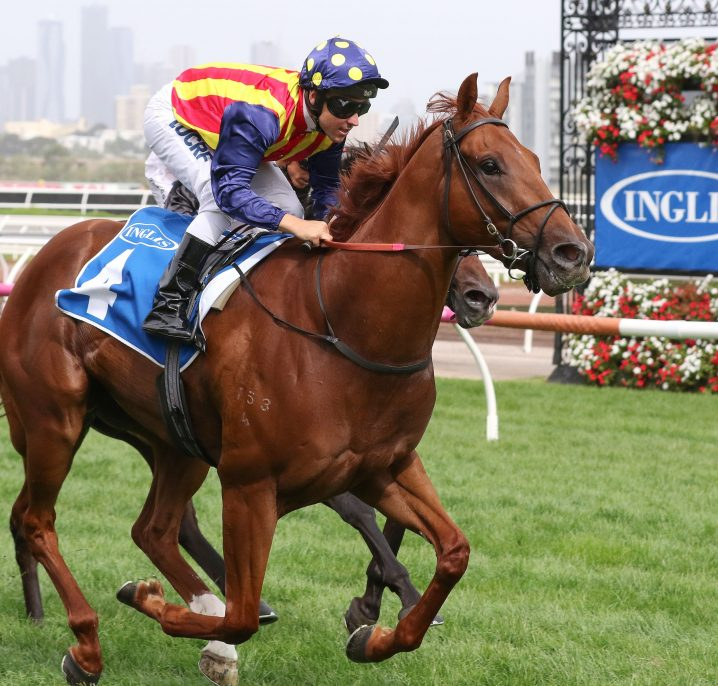 Ardrossan On Oakleigh Plate 2018 Path