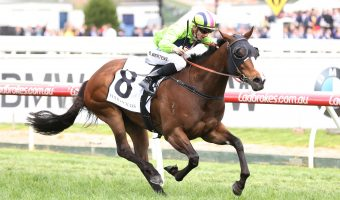 Snitty Kitty Targets 2018 Oakleigh Plate