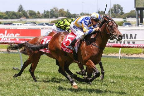 2018 Ladbrokes Blue Diamond Stakes Day: Caulfield Scratchings & Track Report