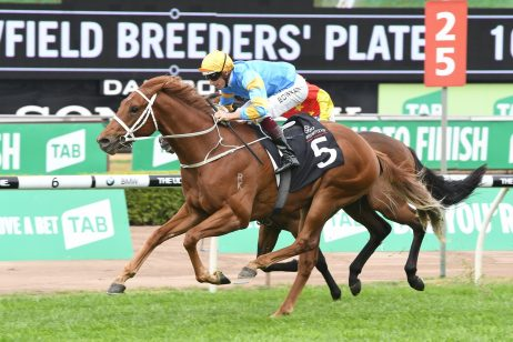 2018 Canonbury Stakes Betting Update & Early Golden Slipper Tips