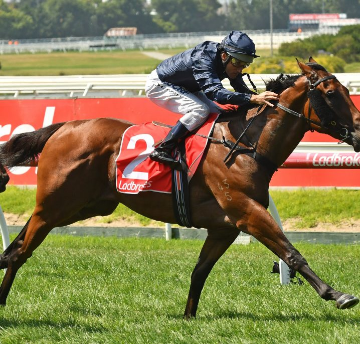 2018 Blue Diamond Stakes Day Results: Valiant Spirit Wins