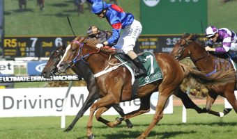 Single Gaze Thriving Ahead of Peter Young Stakes 2018